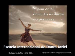 Frases de Danza (16)